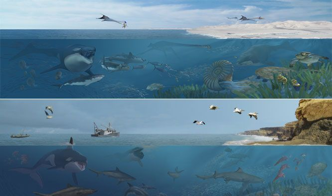Sea Monsters Unearthed! Ancient and Modern Environments by Karen Carr
